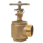 Dixon AVAPR250F-I Valve Global Adj Pressure Restricting Angle Valves F x M 1 PK